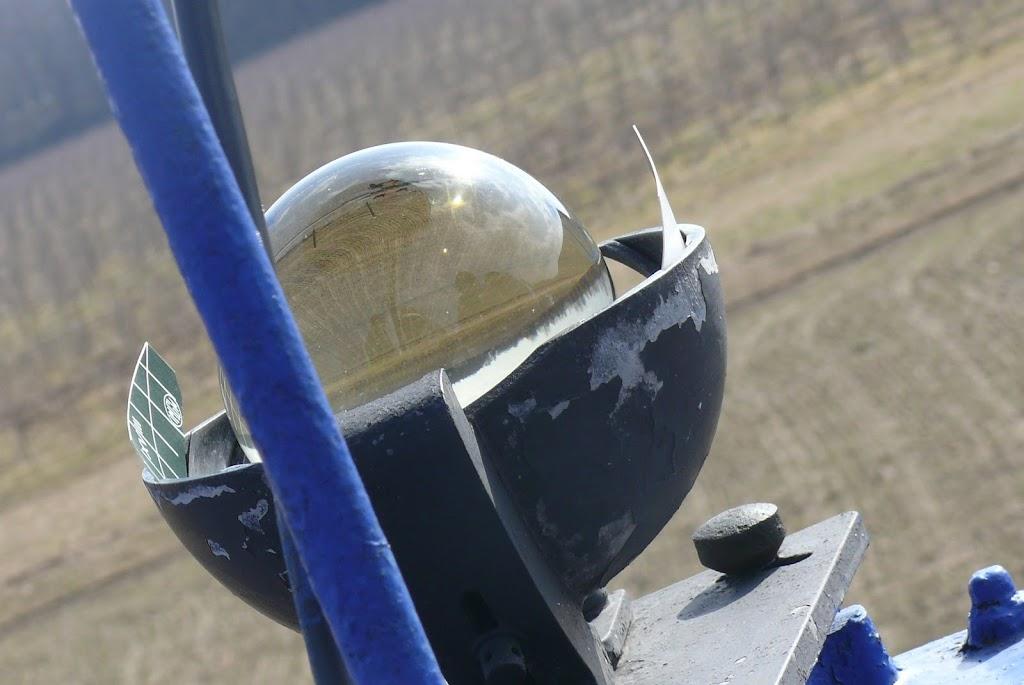 Belsk - Świerk 2011 (SB) - P1060012.JPG