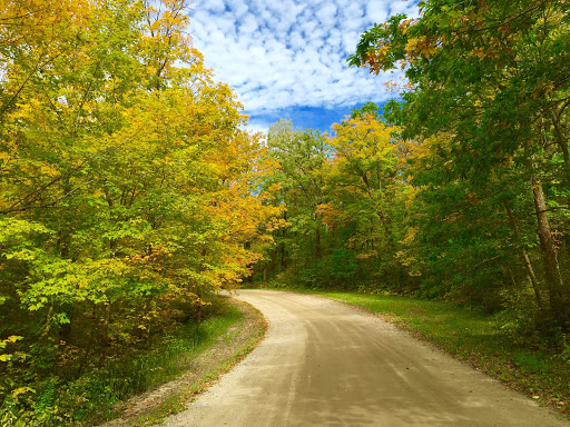 Fall scene on the Maplelag driveway before the weekend