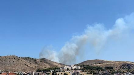 Εύβοια : Φωτιά στην Χαλκίδα σε δασική έκταση κοντά σε σπίτια