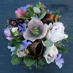 Lente bloemen.JPG