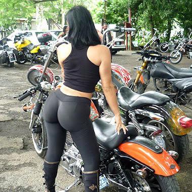 Asiento Doble Para Moto Harley Fat Boy - Accesorios