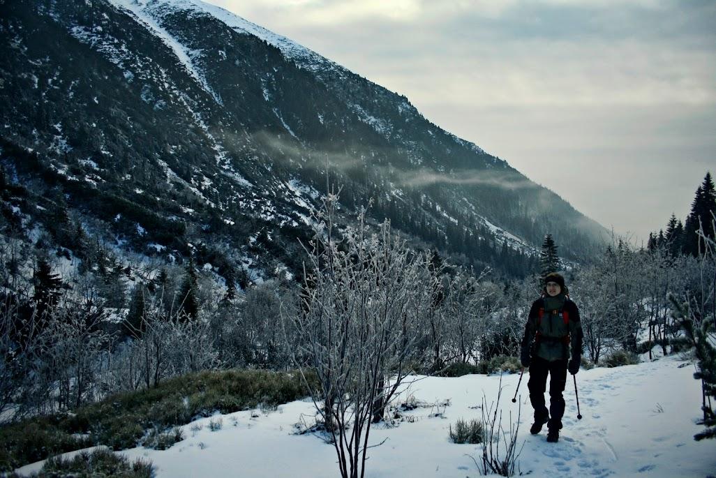 Dolina Kamienista - szlak