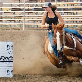 Barreling by Barbara Brock - Sports & Fitness Rodeo/Bull Riding ( barrel racing, horse, woman on horse, action, female rider, rodeo )