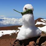 Hawaii_Snowman.jpg