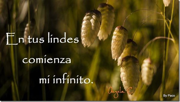 lindes