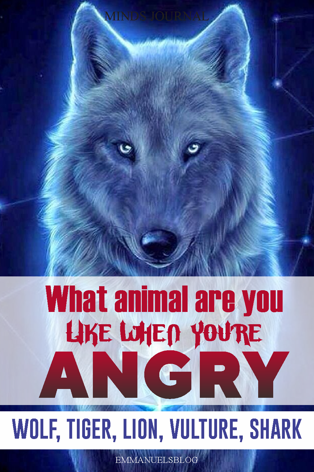 What Animal Are You Like When You're Angry? - This Qiuz REVEALS Who you are