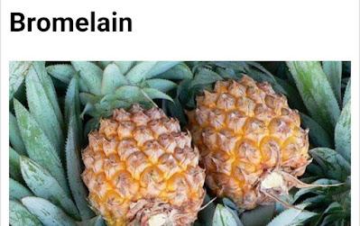 Pineapple botanical name