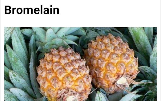 Botanical name of Pineapple/Bromelain and its medicinal uses