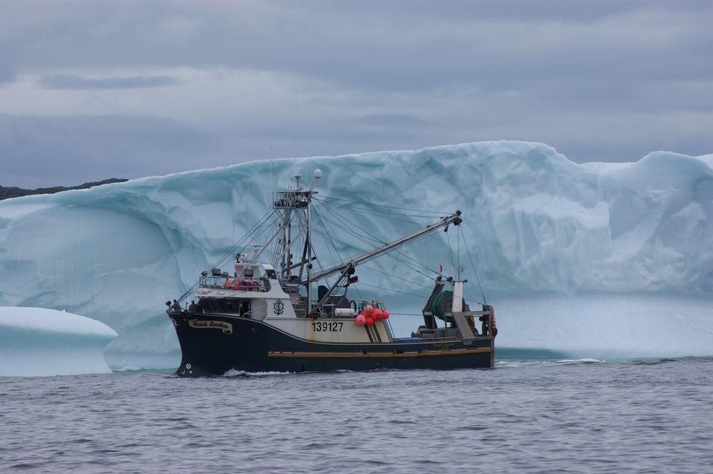iceberg-alley-4