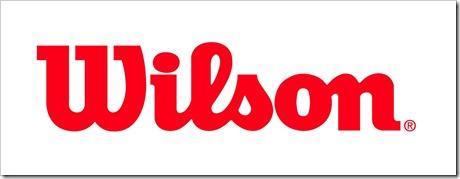 wilson script logo