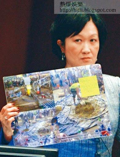 新民黨主席葉劉淑儀指佔中部署精密,又質疑泛民政黨有資助佔中應要調查。