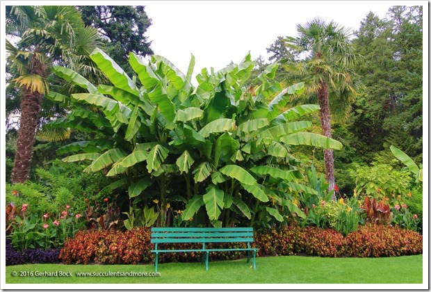 160906_Butchart_Gardens_0179