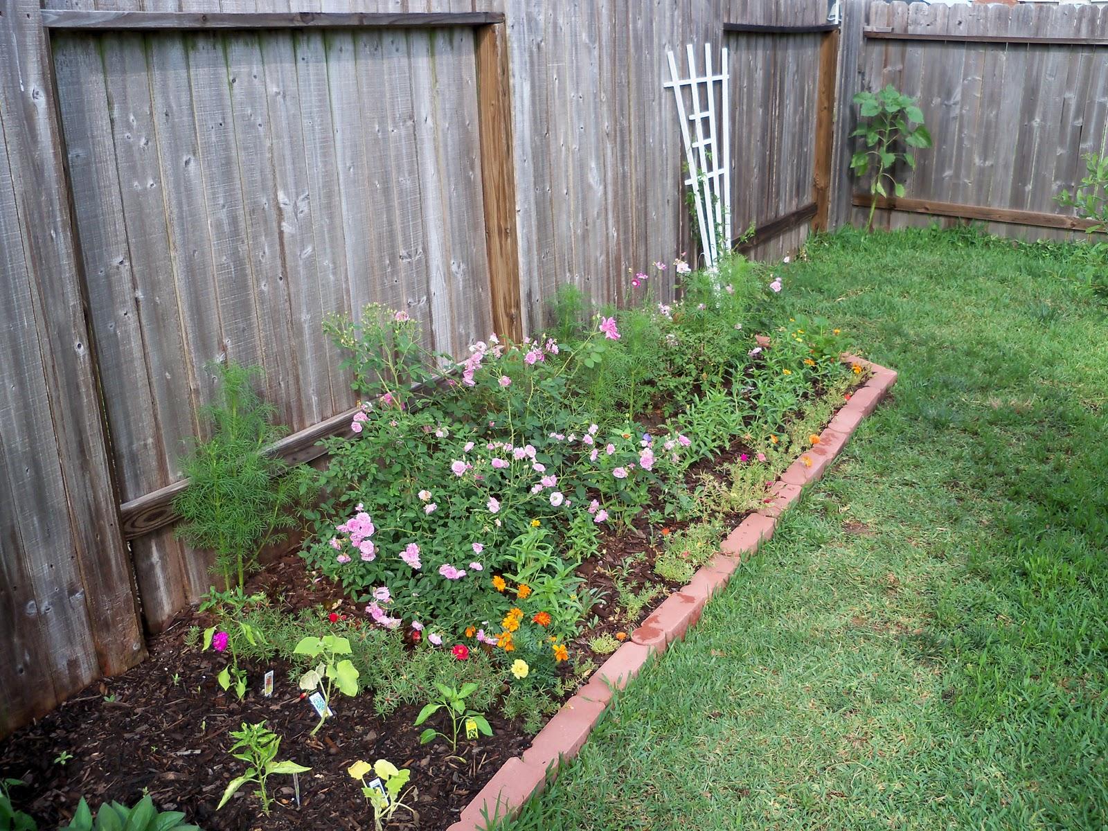 Gardening 2010, Part Two - 101_2200.JPG