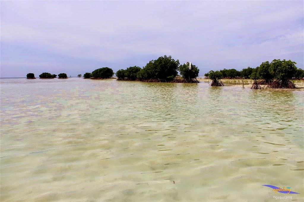 pulau pari, 1-2 Meil 2015 canon  136