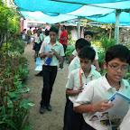 Field Trip to Nursery (Grade 6) 01.08.2016