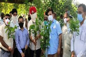 'Backyard Horticulture' Programme: Jammu and Kashmir
