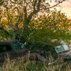 Buddies by Garnie Ross - Artistic Objects Antiques ( car, old, color, vintage, auto, transportation, prairie, antique, classic, abandoned, country )