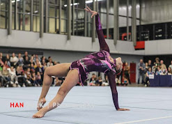 Han Balk Fantastic Gymnastics 2015-5041.jpg