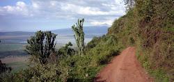 Route d'accès au cratère.
