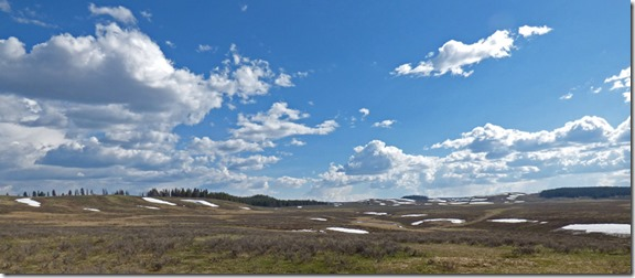 Hayden Valley,  Yellowstone May 2016