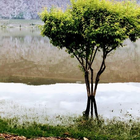 [Osoyoos+Lake+Flood+May+2018_thumb%5B3%5D%5B4%5D]