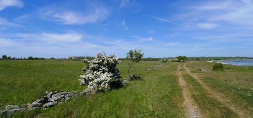 2015-06-13 024_023(Gotland)c.jpg