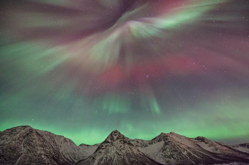 Beautiful Winter Auroras from Hognfjorden, Vesterålen, Norway
