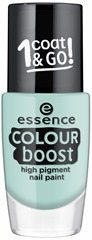ess_Colour-Boost_Nail-Paint_06_1479312870