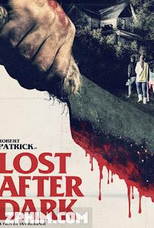 Sau Bức Màn Đêm - Lost After Dark (2014) Poster