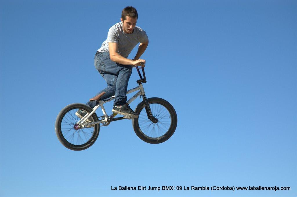 Ballena Dirt Jump BMX 2009 - BMX_09_0047.jpg