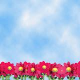 fundo-ceu-com-flores.jpg