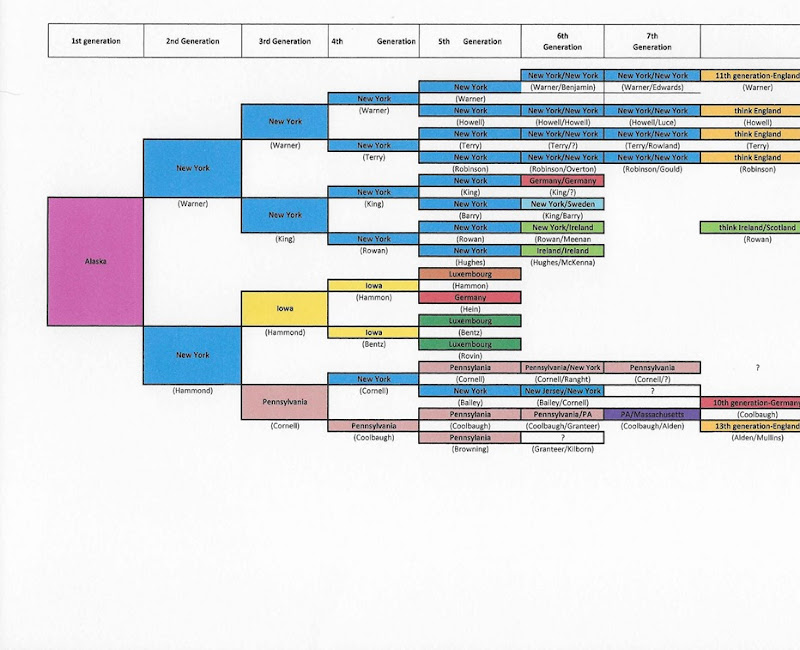 Family Birth Location chart