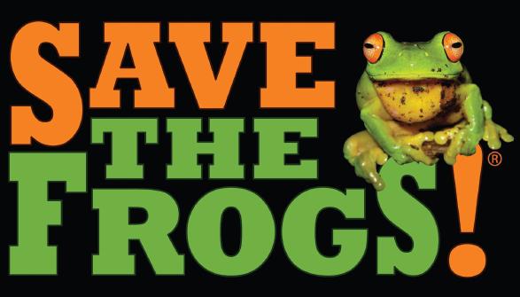 [frogs2%5B3%5D]