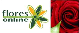 Compre Flores, Cestas e Arranjos sem sair de casa - Flores Online
