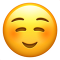 Whatsapp Arti   Smileys Emoticon
