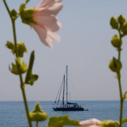 Grand Voyage 2009 - Odessa - 2. a 3.den