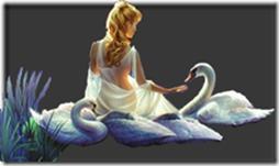 cisnes-buscoimagenes-2_thumb