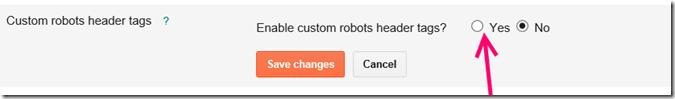 custom-robots-header-tag