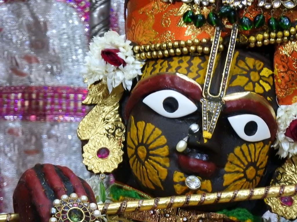 Radha Govind Devji Deity Darshan 08 Jan 2017 (4)