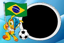 Brasil - Fuleco