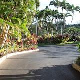 Hawaii Day 6 - 114_1730.JPG