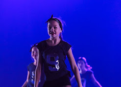 Han Balk Voorster Dansdag 2016-5179.jpg
