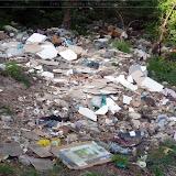 Igienizare si amenajare parcare de la Hula Baznei - 2013 - ecologizare%2Brapa%2BMedias%2B%252811%2529.jpg