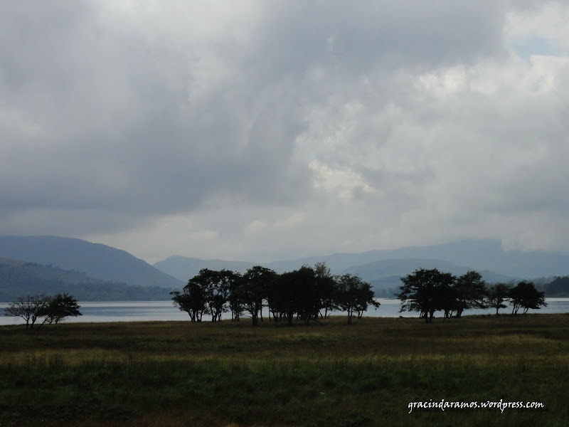 - Passeando até à Escócia! - Página 15 DSC03277