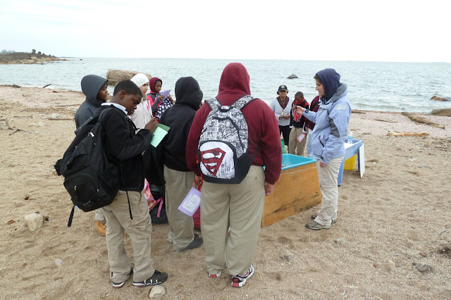 King/Robinson Students Visit Hammonasset - P1020421.JPG