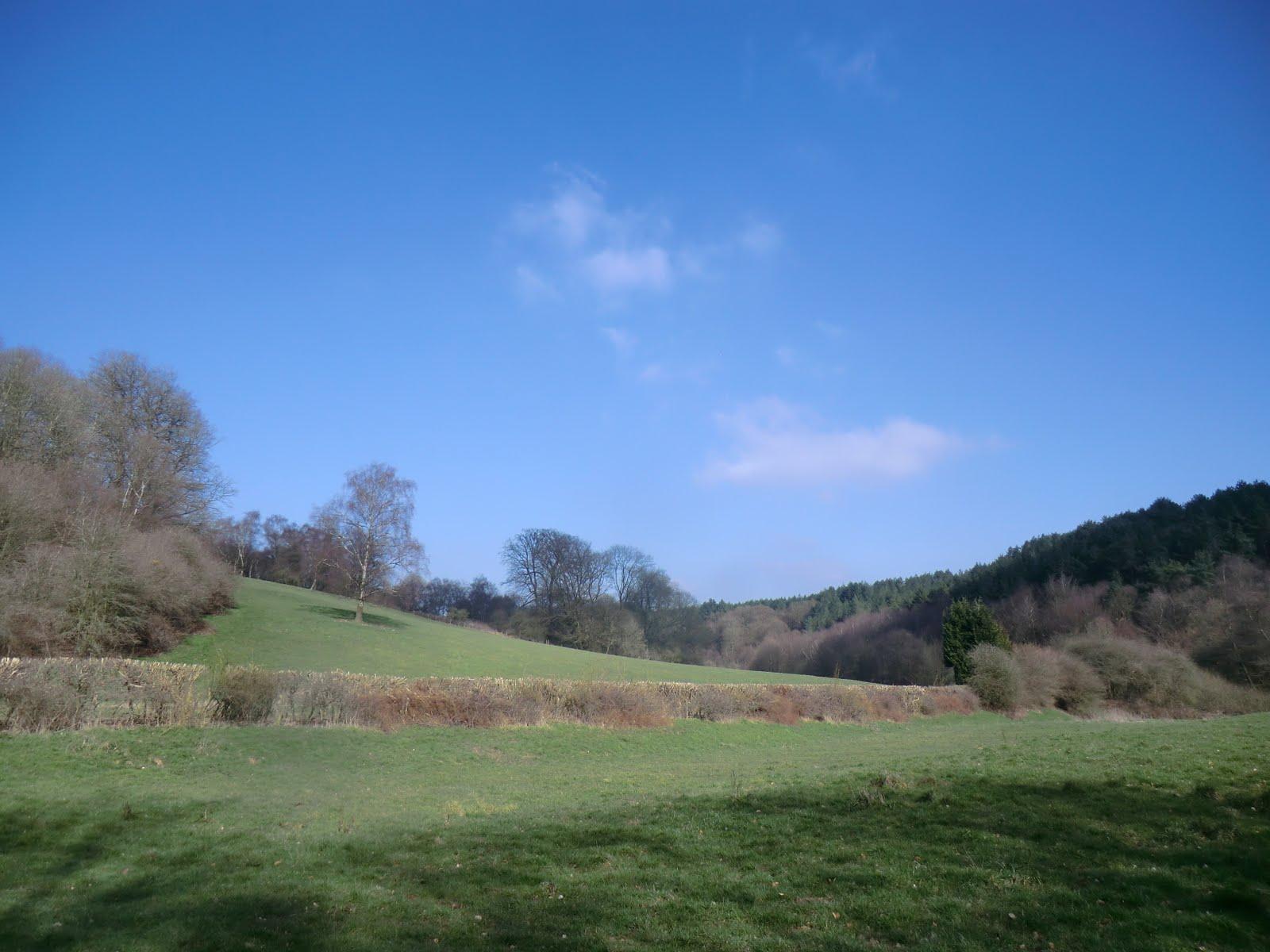 CIMG2878 Squerryes Park