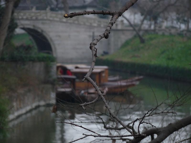 Chine.Shanghai et Suzhou - P1060042.JPG