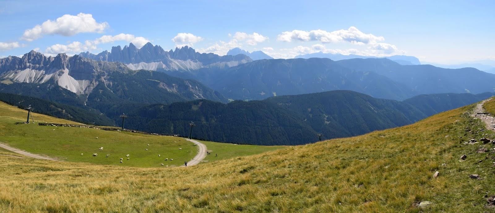 22.8. Z Brixen Plose, Rossalm -102.jpg