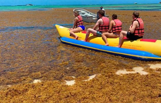Sargazo en playas del Este daña el turismo y el hábitat marino