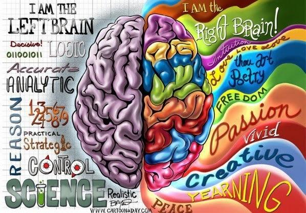 Trabajando los Dos Hemisferios Cerebrales en las Ventas